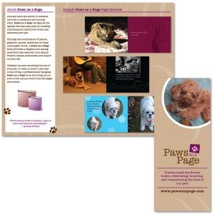Paws on a Page Brochure